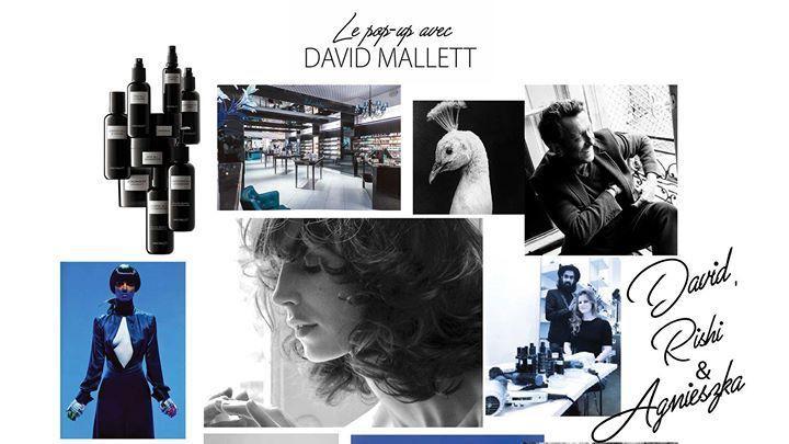 David Mallett pop-up salong - Kaubamaja