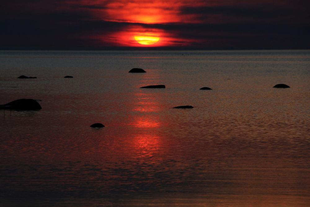 """Loodusõhtu-kontsert """"Mere värvid"""" - Ammende Villa"""