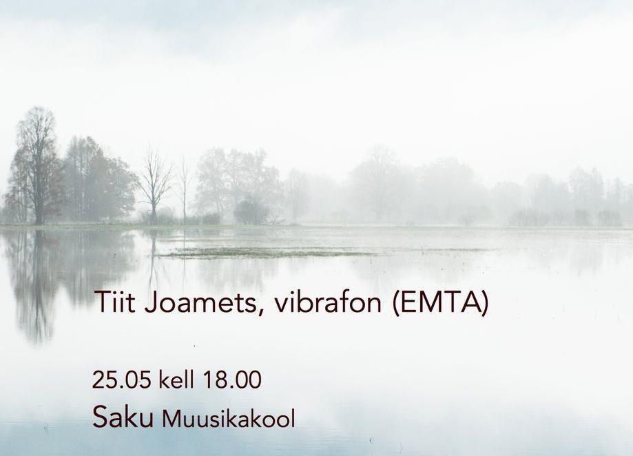 Tiit Joamets vibrafonil - Saku Muusikakool
