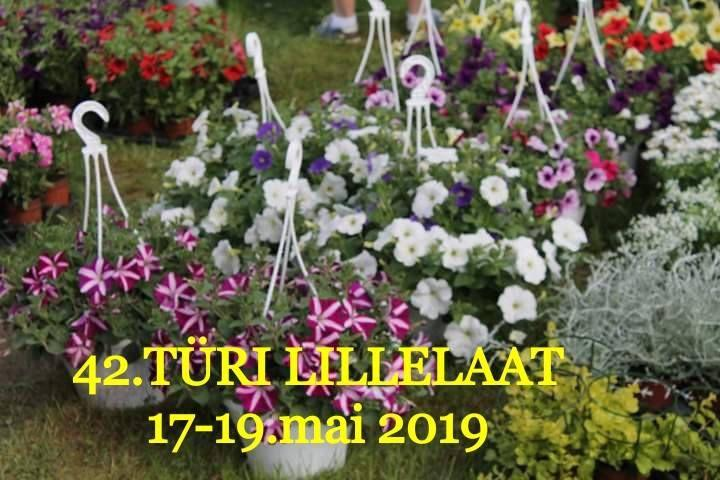 42. Türi Lillelaat - Türi linna võimla Kalevi 9