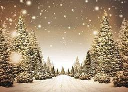 Jõulukontsert - Viimsi Huvikeskus