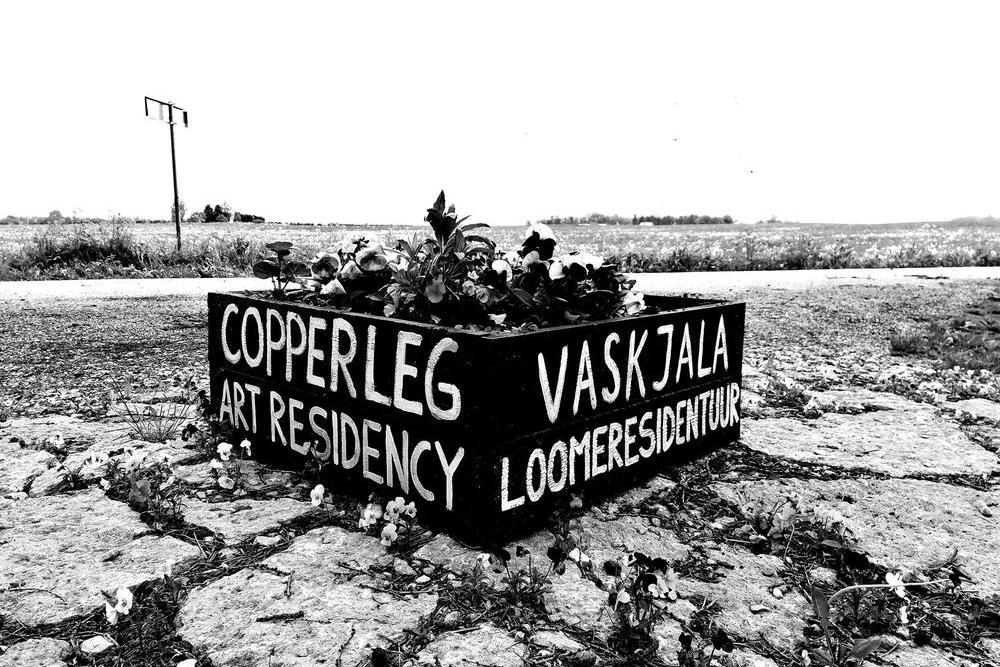 Copper Leg Residency grill & chill - Rae koolimaja