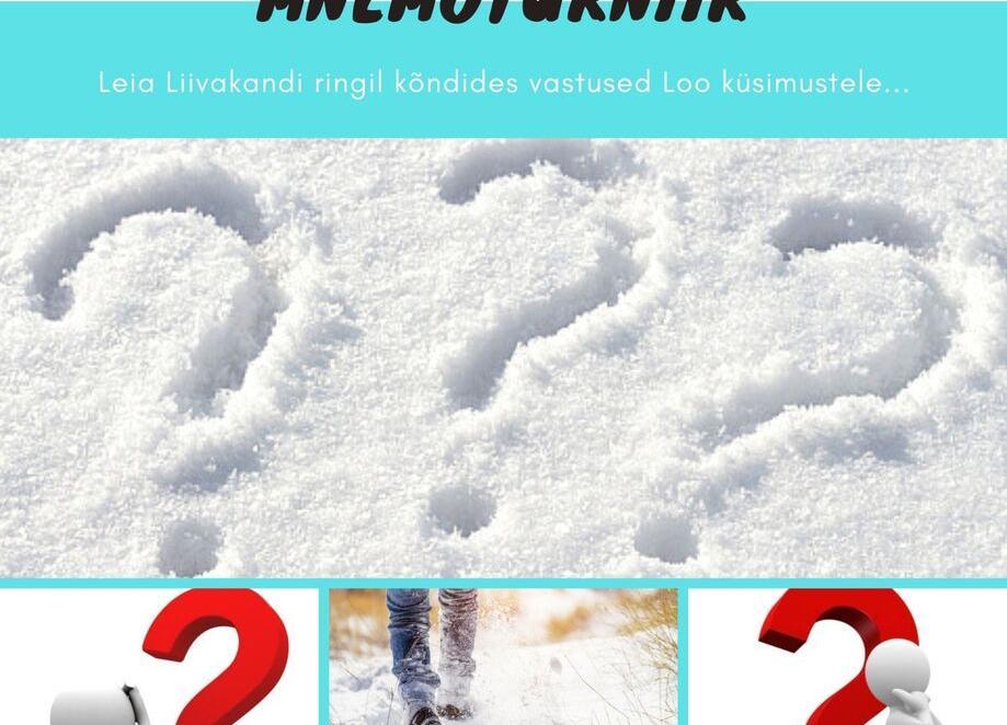 MNEMOTURNIIR - LOO KÕNNIB! 8 - Loo