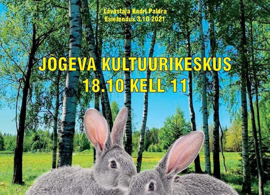 """Viljandi Laste- ja Noortetatri """"Reky"""" etendus """"Memme musi"""" - Jõgeva Kultuurikeskus"""
