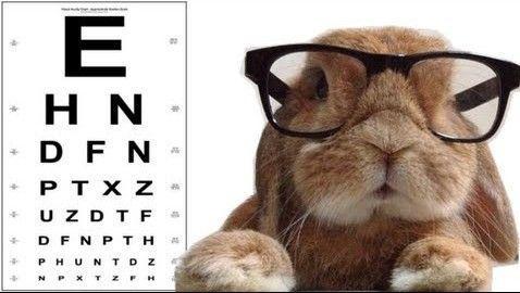 Hindpere Optika nägemiskontroll - Kiisa Rahvamaja