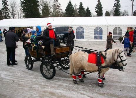 11. Harku valla heategevuslik jõululaat  - Ranna tee 2