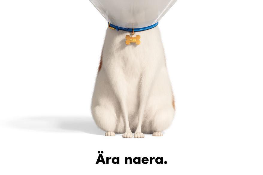 """Kino """"Lemmikloomade salajane elu 2 3D"""" - Võru kino Kannel"""